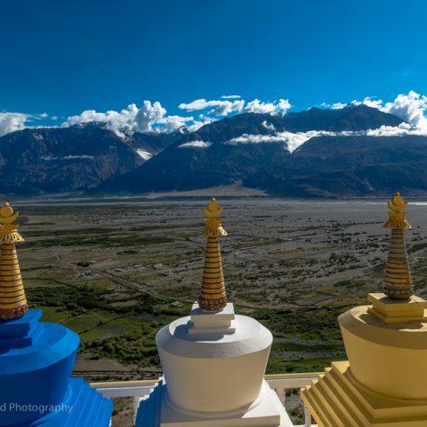 desert himalaya resort nubra